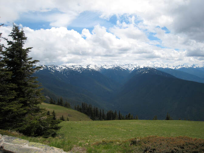 Hurricane Ridge in the Olympic Mountains in Washington State
